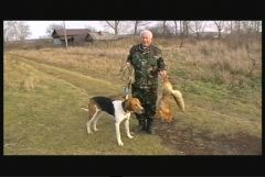 Охота на лис, 2009