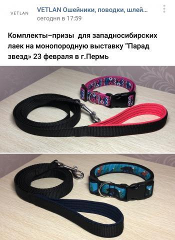 post-8458-0-28258500-1581511034_thumb.jpg