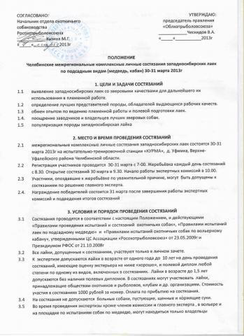 положение Челябинск.jpg