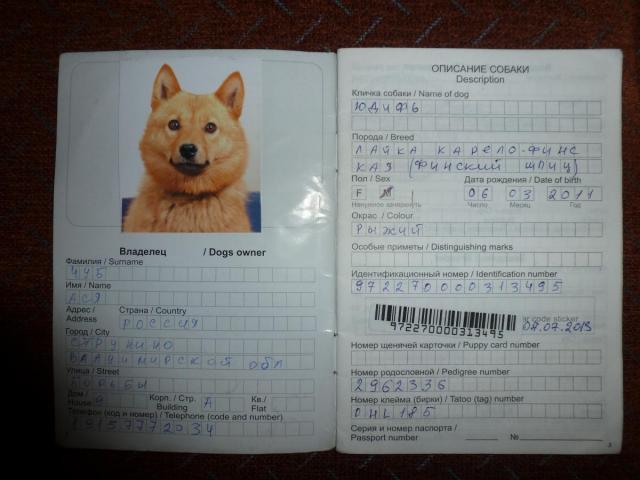 Ветпаспорт Собаки Образец Заполнения - фото 11