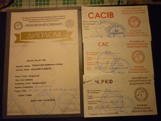 Диплом Толстого 001.JPG