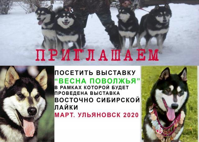 открытка-1.jpg