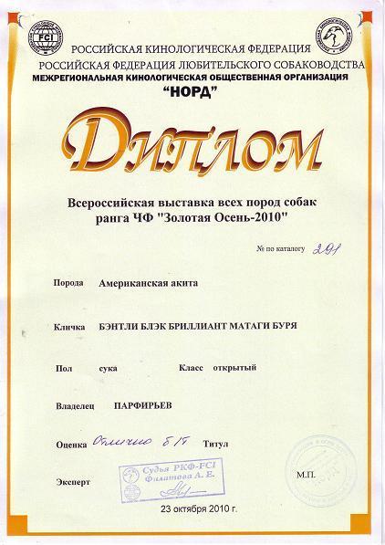Купить диплом пермь пгу Русский язык экзамены для поступления в ТИУиЭ купить диплом пермь пгу математика московский социально гуманитарный институт Таганрога филиал МСГИ