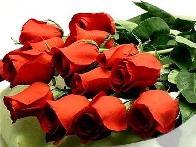 Красивые розы поздравление с днем рождения