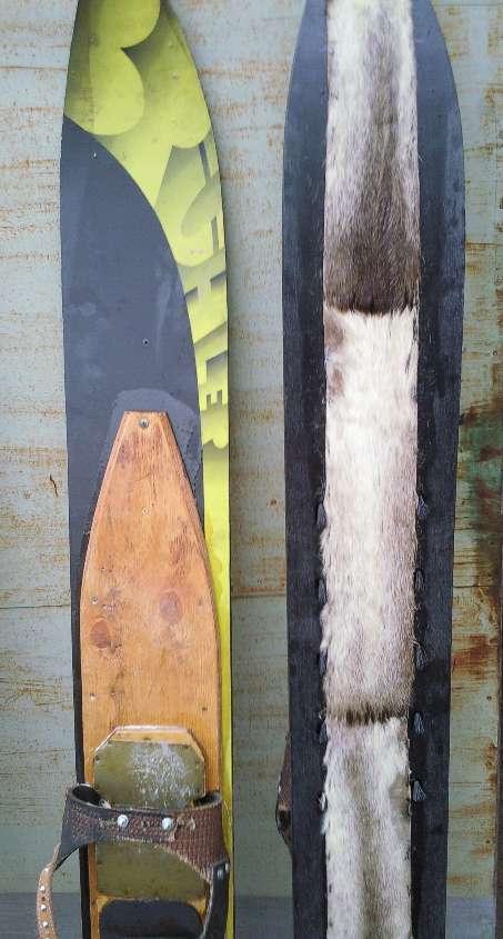 Как обшить лыжи камусом своими руками 46