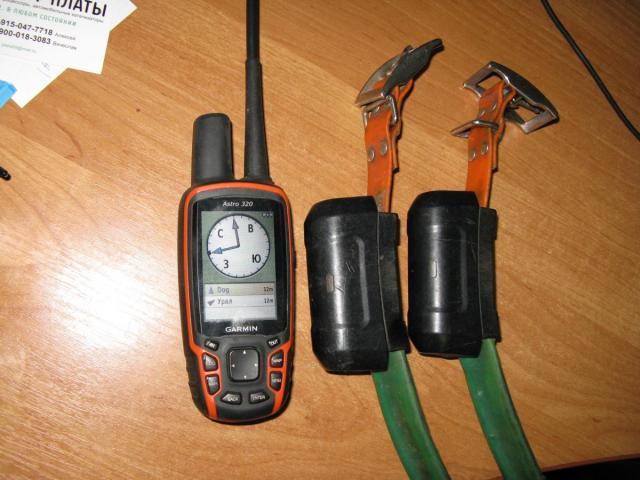 post-2225-0-63333100-1542195202_thumb.jpg