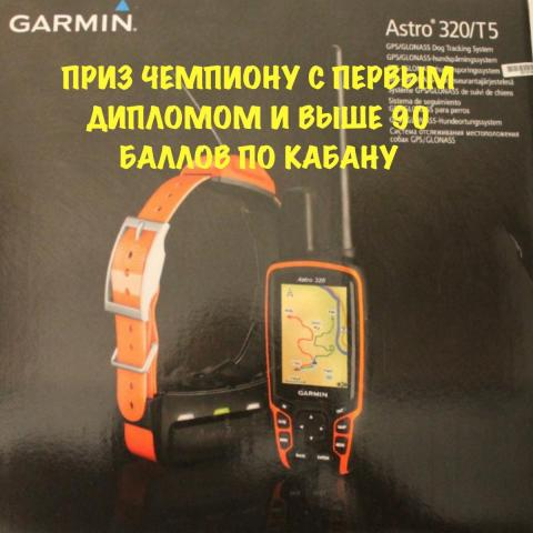 post-7904-0-88422900-1541333174_thumb.jpeg
