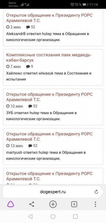 Screenshot_20200221_111409_com.yandex.browser.jpg
