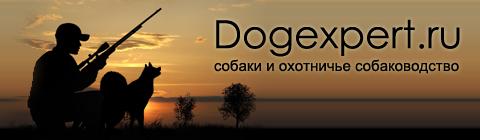Собаки и охотничье собаководство