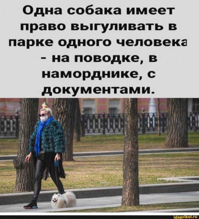 a66c7feac3336a3beace16b04764b6bacfe759db0555157b7e399e36c417e7a0_1.jpg.jpg