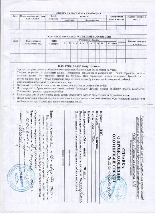 АЛИМЕНТНЫЙ ЩЕНОК  АЯЗА  2020 г. стр. 1 001.jpg