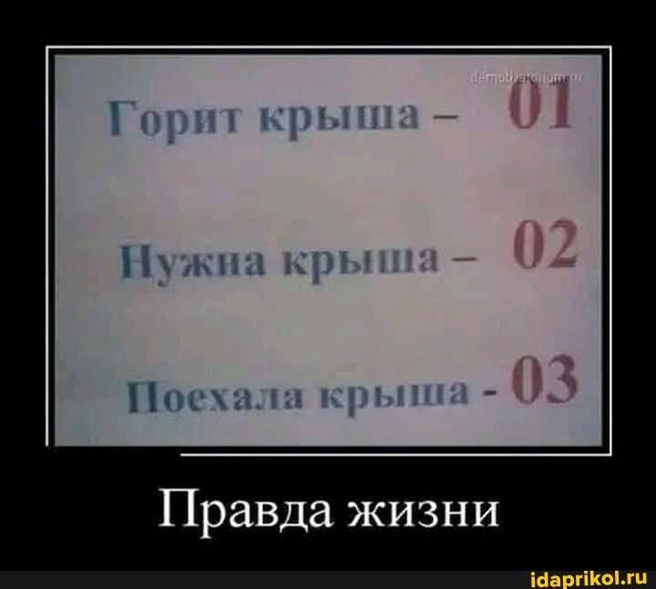 5045f556c855683951661883a38cb965c7ab78a6bc2906a454055b925f803831_1.jpg.jpg