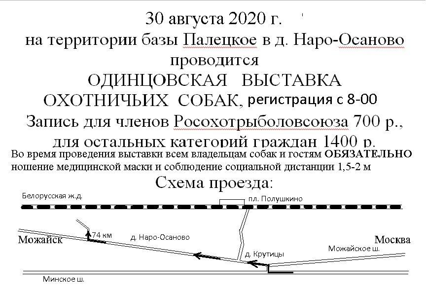 Одинцовская выставка 2020 г..jpg