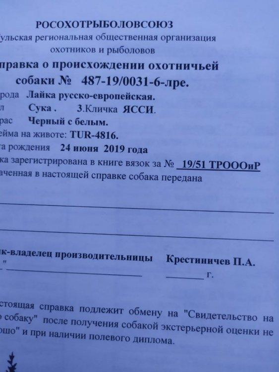 IMG-20201009-WA0005.jpg