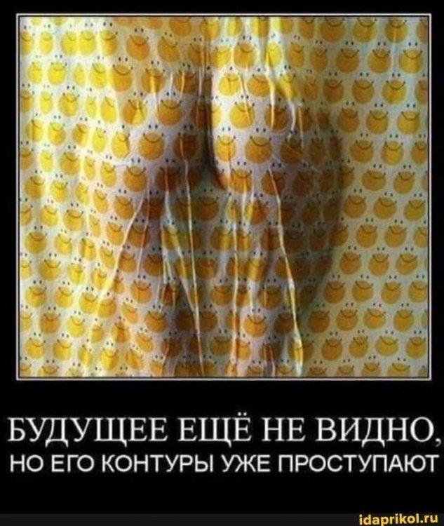 246fefa0b7068264e2b4a922b9796a572098b59b511e605b5d3e68e935cba8c8_1.jpg.jpg