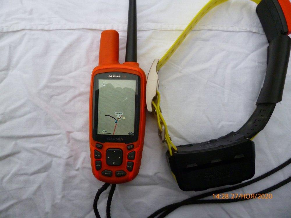 P1010392.JPG
