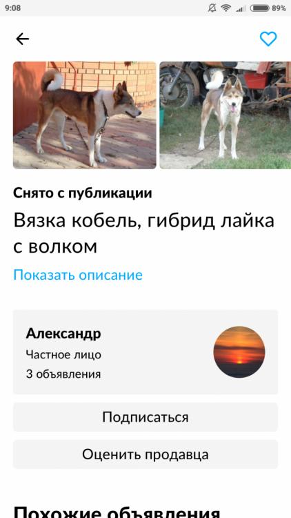 Screenshot_2020-11-25-09-08-20-547_com.avito.android.png