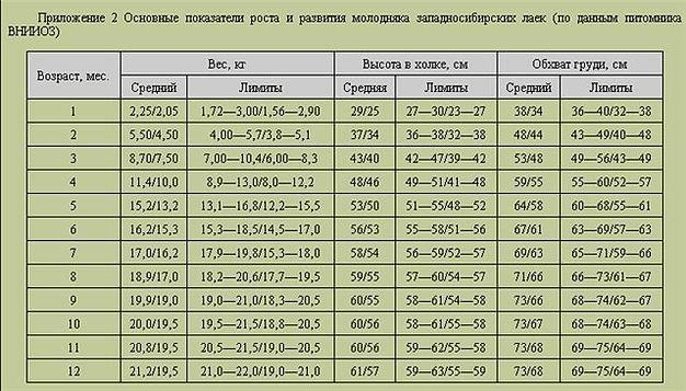 post-199-0-50319600-1462388832.jpg