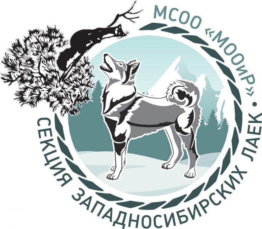 logo_layka (1).jpg