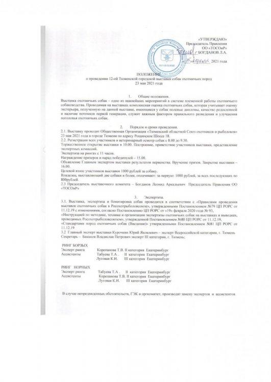 Положение о Тюменской городской выставке1.jpg