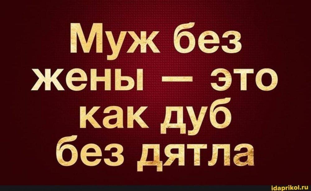 7aa05bc9b282c0df2992576d1355169e655675f457bed5c81d0c840a615be22a_1.jpg.jpg