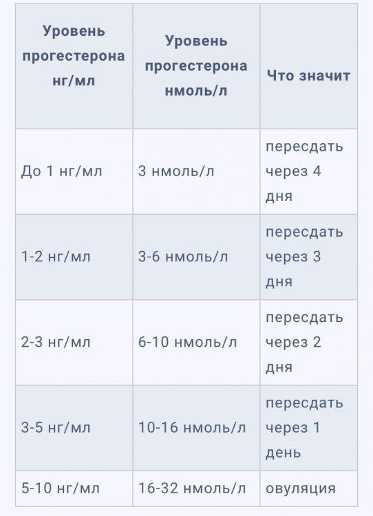 53FB7B12-0318-4142-8C5B-63BCAEE64AE5.jpeg