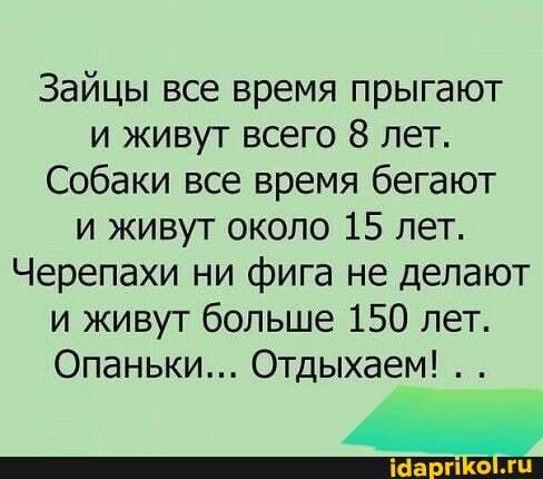 0ae8c3e99cac66f82467308dd8be778315ddeb5a78a35d66f1524112fbd35d21_1.jpg.jpg