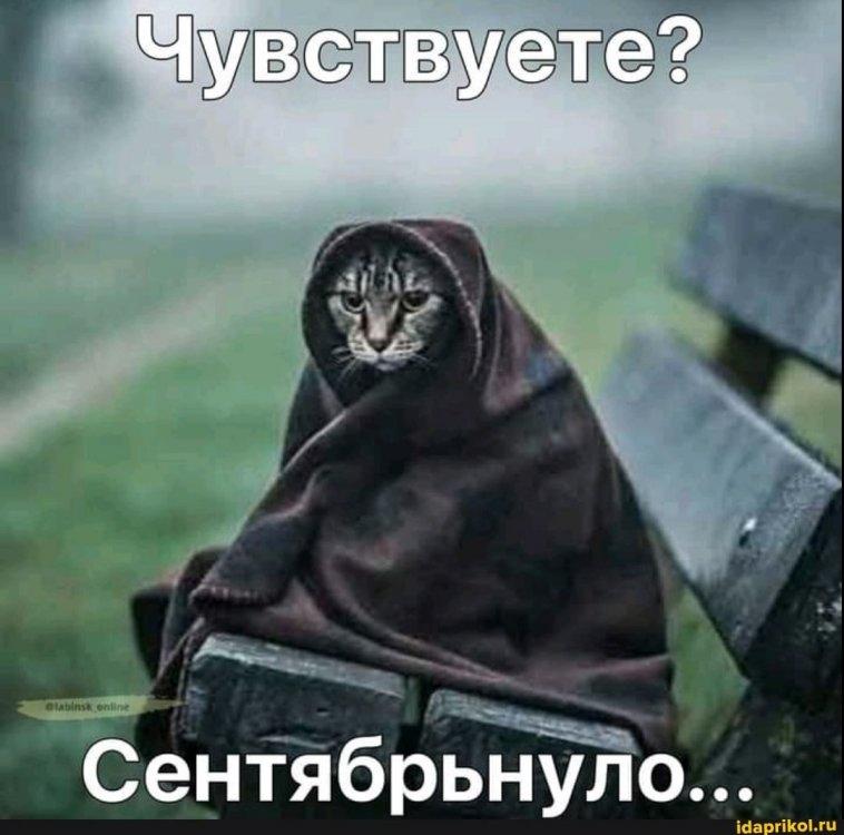 1045fe48bcd362ab248cac507884a9fec0860efdb773844e30d663847d21ff3d_1.jpg.jpg